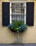 1024 Kalejnar window.jpg