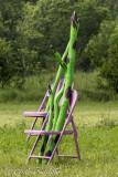 Asparagus Fans