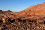 Early Morning in the Painted Desert
