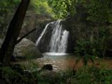 Kilgore Falls 4 wk1 IMG_6542.jpg