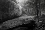 Kilgore Falls 6 wk1 bw IMG_6474.jpg