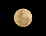 Super Moon at our place