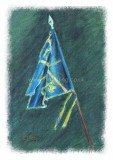 Bonnie Banner Blue C6 p.jpg