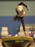 Artistic Gymnastics_Gallery