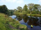 Late Summer on the River Tees, Hurworth