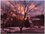 Morning in Gaithersburg