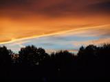 Sunset in the backyard 1