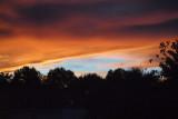 Sunset in the backyard 2