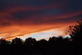 Sunset in the backyard 3
