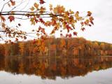 Reflections at Seneca Lake