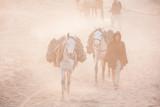 Horses carrying heavy bricks