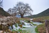 Ladonas River