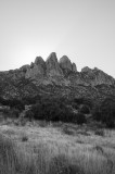 Organ Mountains, NM (2014)