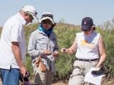 Drs. Ken Van Winkle, Fumi Arakawa, and Diane McMillan