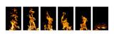 Fire x 6