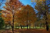 Autumn Colors - HDROctober 18, 2013