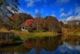 Pond Reflection - HDROctober 24, 2013