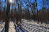 Hiking/Ski Trail -  HDRJanuary 29, 2014