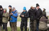 Waiting for a Siberian Accentor