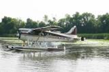 De-Havilland_DHC2-MkI_1126_N31357_1957