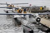 DHC2-mkI_CFWAC_Harbour-Air_CXH002.jpg