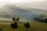 Terre di Siena 2011