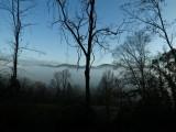 8630.FoggyMorn