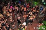 Kelly's Kinky Karnival  1