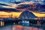 Grant Grove - Morro Bay