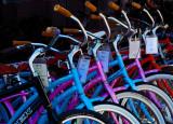 Bicycle Row