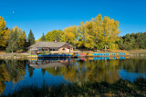 Paddle Boats And Aspens