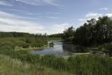 Farmscape Pond