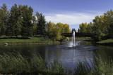 Bower Ponds, Fall 2016