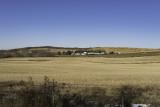 Late Fall Farmscape