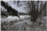 Deep Into Winter