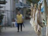 Fish drying, Tai O, Lantau Island