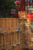 Bird market, Mongok