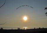 Lake Erie-Magee Marsh ( good-bye)