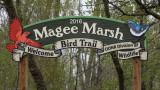 magee_marsh_2016