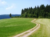 Winding cart track