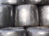 Plastic coated hay bales
