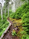 Sugarloaf Path