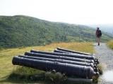 Cannon barrels