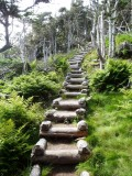 Upward stairs