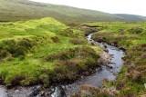 Meandering stream