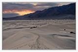 Mesquite Sand Dunes -1