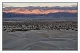 Mesquite Sand Dunes -2