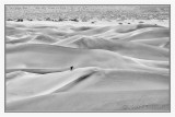 Mesquite Sand Dunes -8