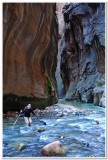 Virgin River Narrows 5, Zion National Park