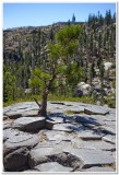 Devil's Postpile 4, Mammoth Lakes, California